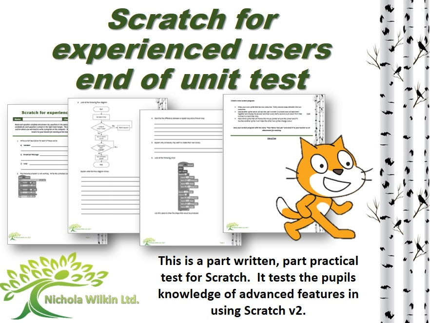 KS3 Computing: Scratch (experienced users) test