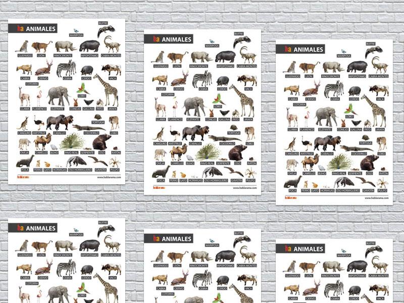 Spanish Vocabulary Posters - Animals