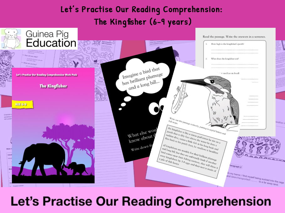 The Kingfisher (Let's Practise Our Reading Comprehension) 6-9 years