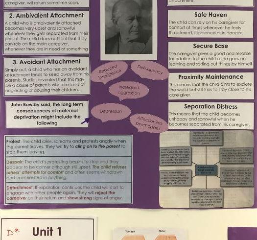 John Bowlby Theory PowerPoint, wall display and extra reading activity