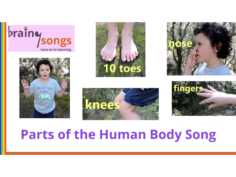 PARTS OF THE BODY for Year 1