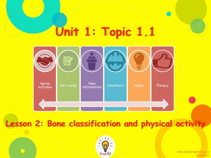 NEW Edexcel GCSE PE Unit 1 - Topic 1 - Lesson 2 - Bone Classification and Physical Activity
