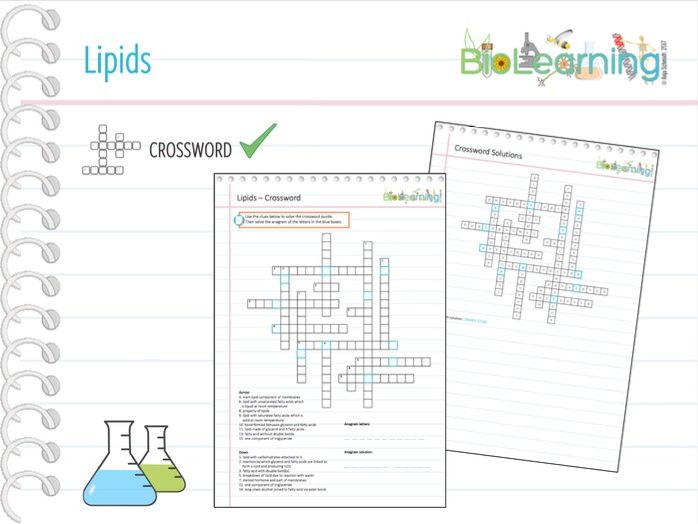 Lipids - Crossword (KS5)