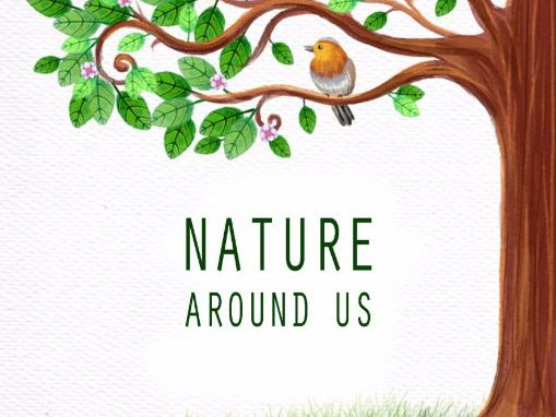 NATURE AROUND US