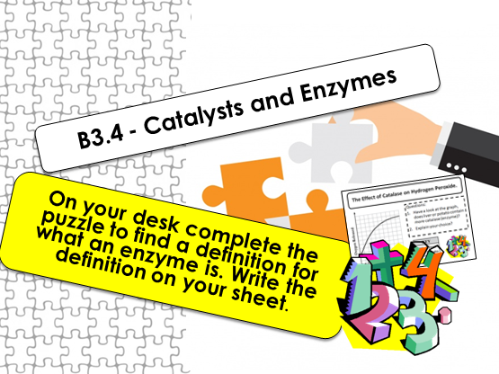 GCSE Catalysts and Enzymes (AQA B3.4)