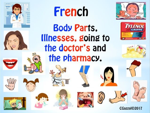 French – Body Parts, Illnesses, Chez le médecin and À la pharmacie.