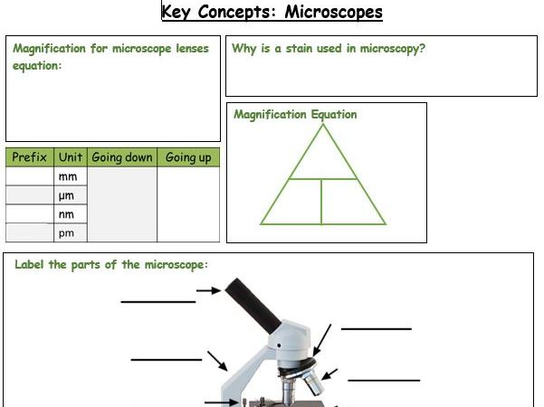 Edexcel Biology Paper 1 and 2 Revision Lessons Bundle