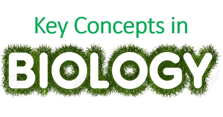 Key concepts in Biology, Topics 1-3 Edexcel Biology 9-1 (Cells, Microscopy and Enzymes)