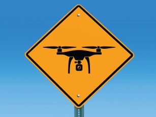 Drone Debate! Persuasive Writing