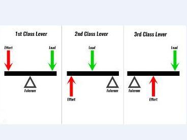 OCR 9-1 GCSE PE Section 1.3 Movement Analysis