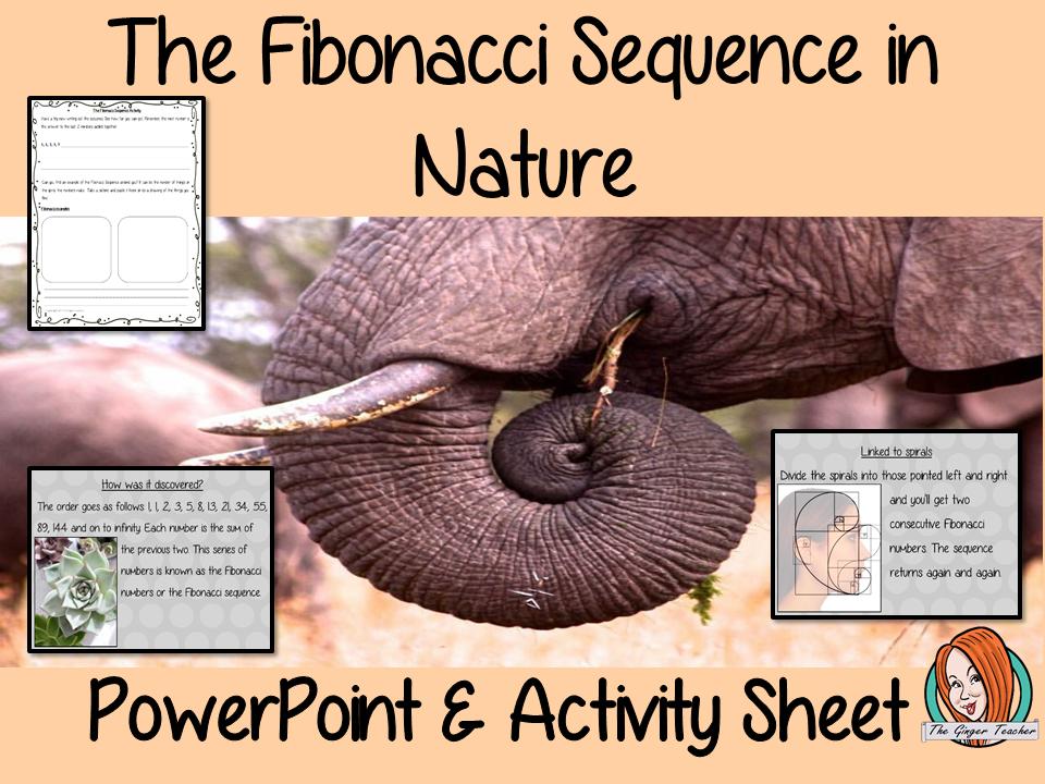 Fibonacci Sequences in Nature