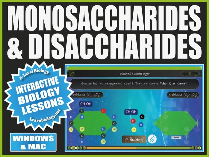 A Level Biology Interactive Lesson - Monosaccharides & Disaccharides