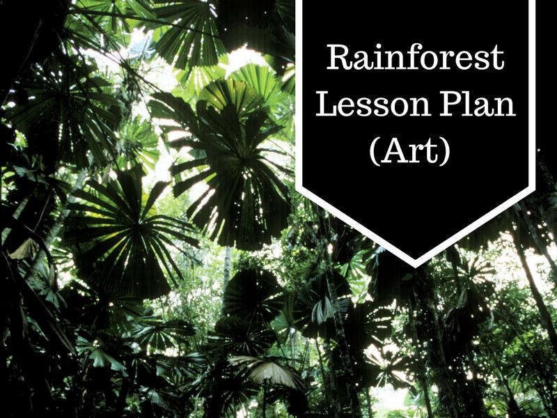 Rainforest Lesson Plan (Art)