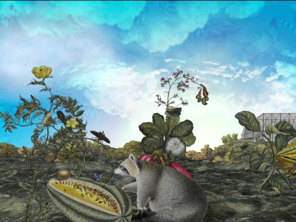 The Curious Cases of Carl Linnaeus: Habitats