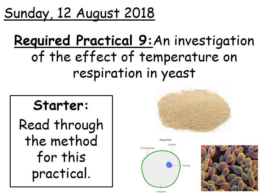 AQA A level Biology - Core Practical 9