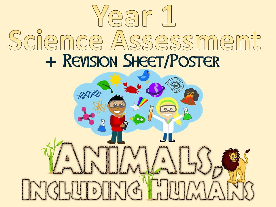 Year 1 Science Assessment: Animals, Including Humans + Revision Sheet/Poster