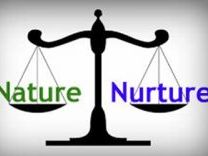 A level Psychology- Nature vs Nurture 16 Mark Essay