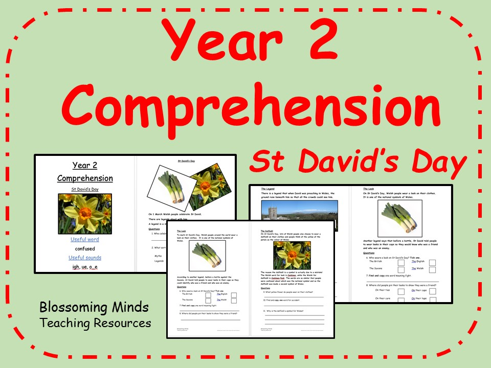 Year 2 Comprehension - St David's Day