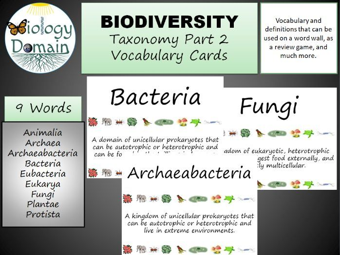 Taxonomy Word Wall Vocabulary Cards Part 2