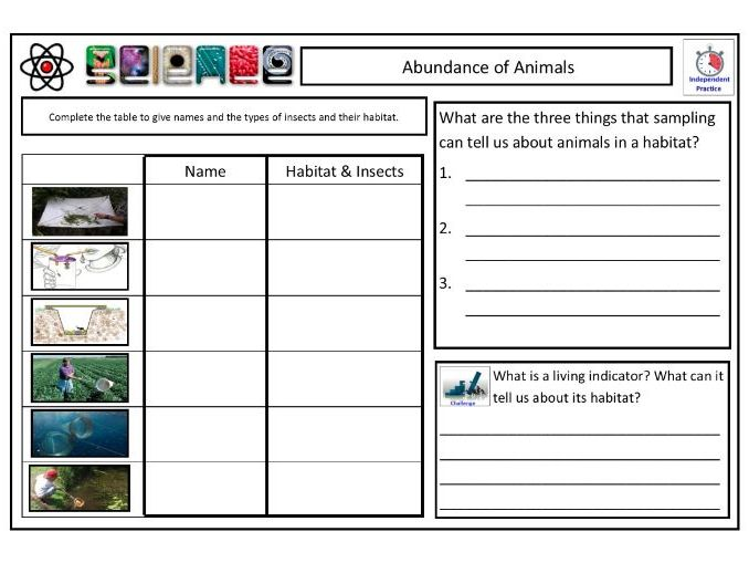 ANIMAL SAMPLING TechniquesCLF Lesson & Resources - Lesson 3 - KS2 KS3 KS4 BIOLOGY