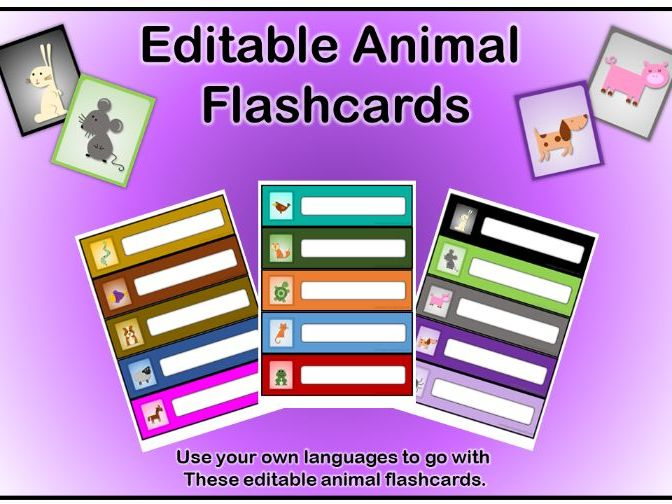 Editable Animal Flashcards