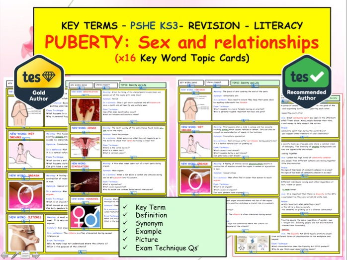 PSHE / Puberty   - Sex and relationships   x16 Key term / words  Topic revison cards. Literacy.  KS3