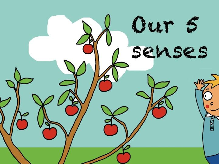 Our five senses. ESL resource for primary.