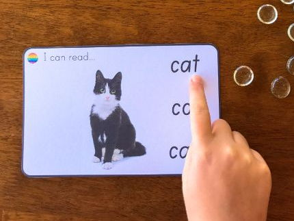 CVC 'I Can Read' Word Cards