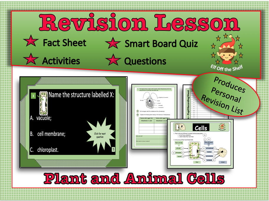 Plant and Animal Cells-Structure and Differences ...