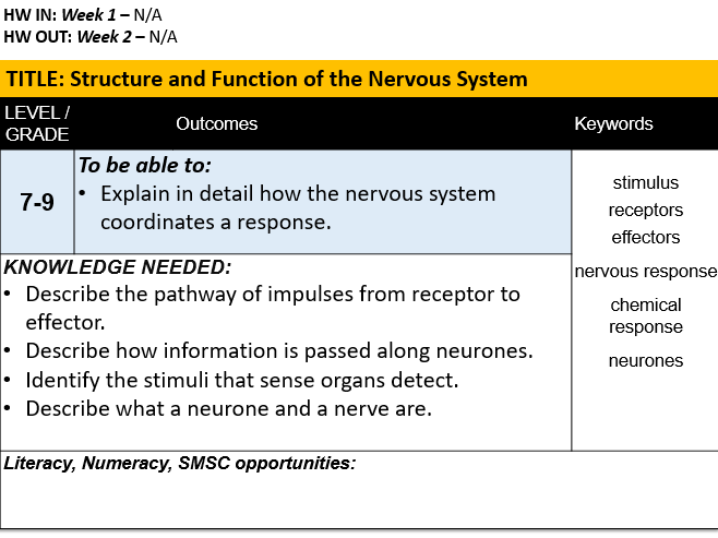 B10.2 Structure and Function of the Nervous System