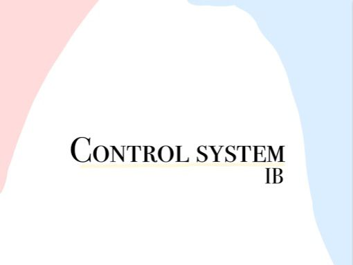 IB Control System summary part 1