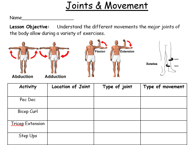 KS3 Fitness scheme pack 14 lessonsworksheets by jpridmore – Joints and Movement Worksheet