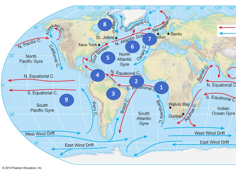 Global TWOCAP game. (Temperature, wind, ocean currents and air pressure)