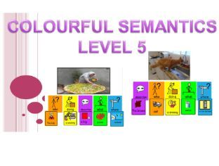 Colourful Semantics activity pack (22 pics) Level 5 (Subject, Verb, Object, Place, Describe) SLD