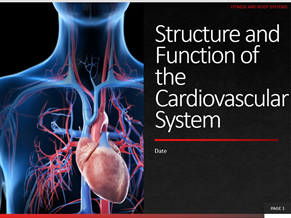 7. Structure and Function of the Cardiovascular System