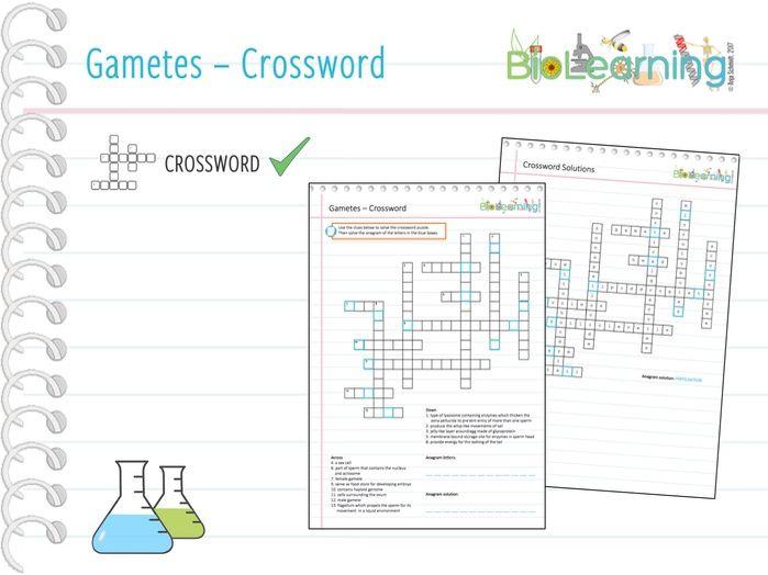 Gametes - Crossword (KS5)