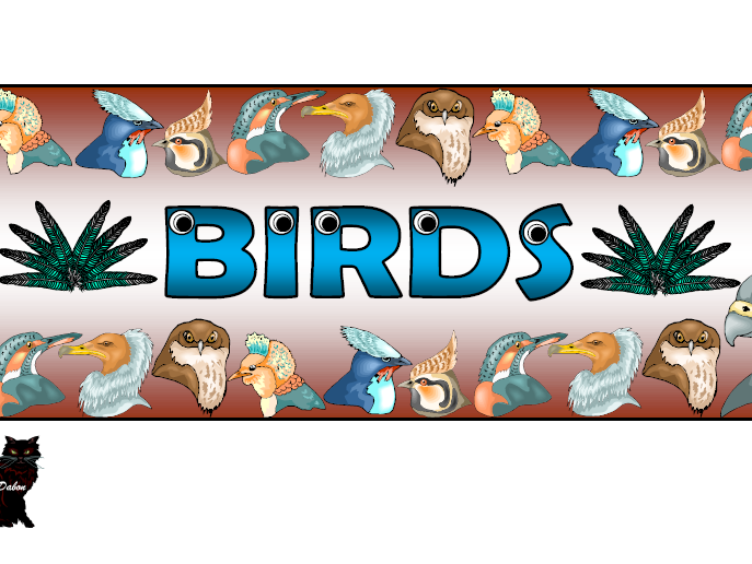 Birds Themed Pack