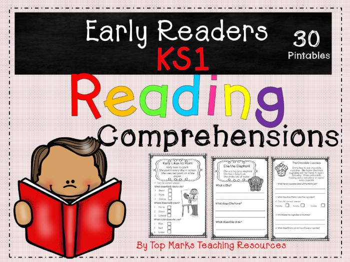 KS1 Reading Tests and Revision | Tes
