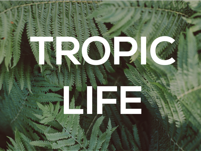 Tropic Life I Create Your Own Resources