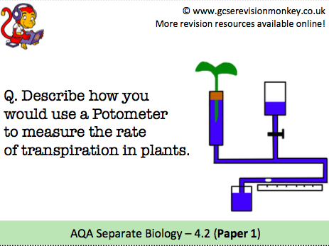 Revision Cards - AQA Separate Biology 4.2