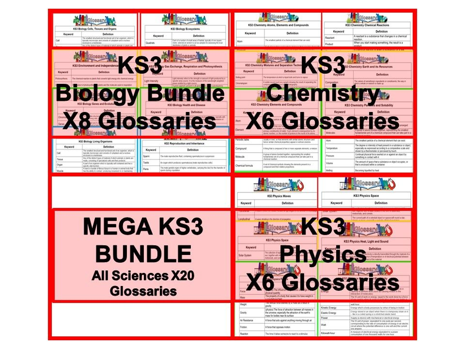 KS3 Science Glossaries x20 Biology Chemistry and Physics (Blank and Completed)
