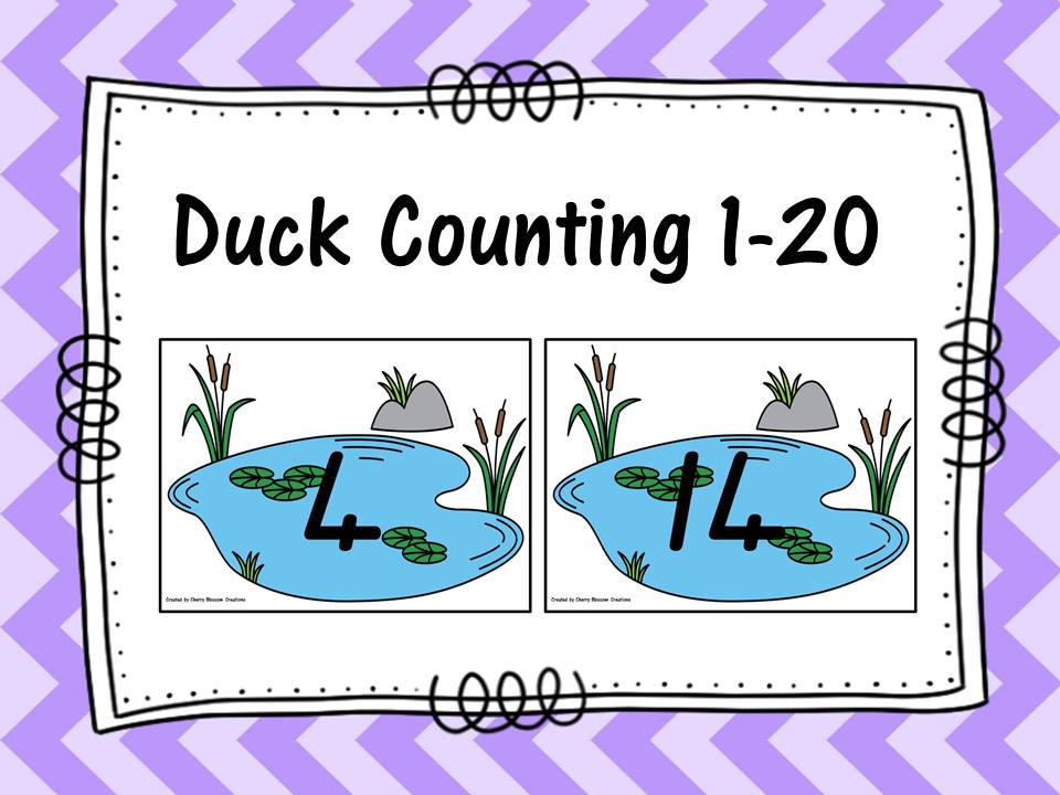 Duck Counting 1-20