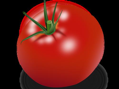 Vegetables - A Printable Worksheet