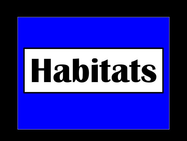 Habitats Editable PowerPoint