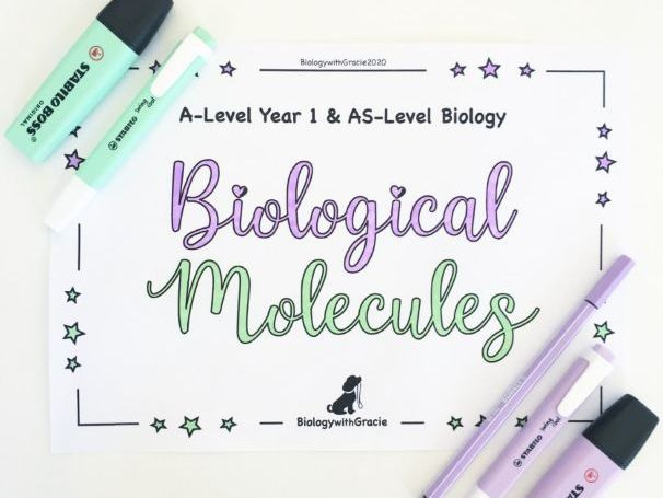 A-Level Year 1 & AS- Level Biology Biological Molecules Revision Workbook