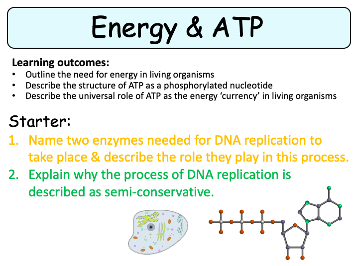 NEW (2016) AQA AS Biology – Energy and ATP