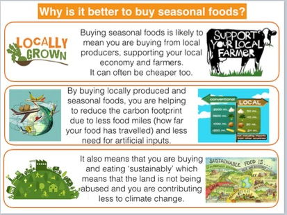 Seasonality and Sustainability