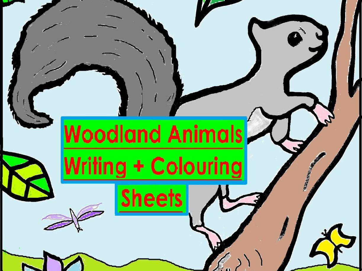 Woodland Writing + Colouring Sheets - EY-Y2