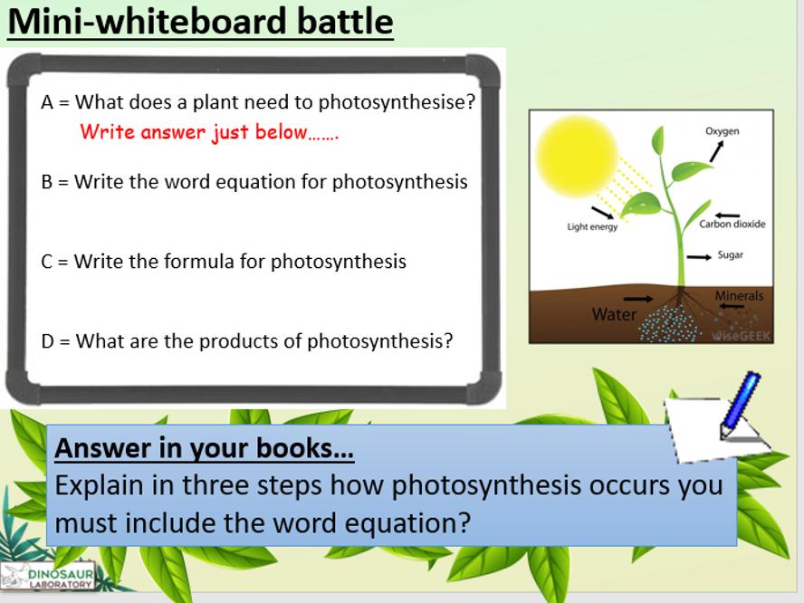 KS4 B8.1 Photosynthesis