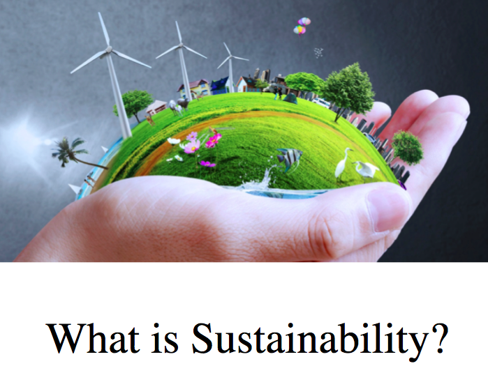 What is Sustainability in Fashion?